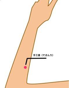 tesanri1-237x300