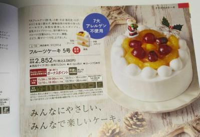 fruitcake5
